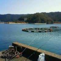 2012年3月3 日 in 三重・錦漁港
