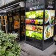 東京・表参道「CITY SHOP NOODLE(都市商店麺)」でヌードルランチ。選べる楽しさ満喫しました!