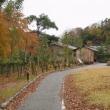 金沢の秋2017-14 鈴木大拙館、本多公園エリア