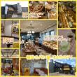【モブログ】福井の素敵なパン屋さん「はちの子」
