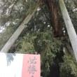 名古屋城検定❕
