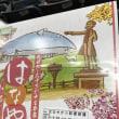 ファイターズ対ライオンズ  第2戦  札幌ドーム