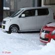 今シーズン 初の雪かき