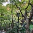 鎌倉一条恵観山荘