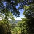 【そこにいるだけで心身浄化される環境!里山でのとっても楽しいトレッキングタイムでした!】