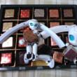 ドロッセルお嬢様の(文字通り)チョコレート盛り合わせ