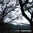 君津in 稲ヶ崎キャンプ場