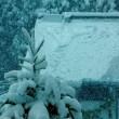 一気に===雪~!!!