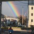 虹を見ました。