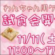 大創業祭&お知らせ
