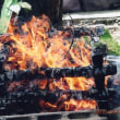 ゼロ磁場 西日本一 氣パワー 開運引き寄せスポット 火炎の洗礼(4月19日)