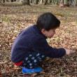 2017.04.15_水林自然林