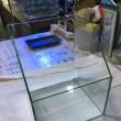 中古 GEX 200×200×245台形オールガラス水槽