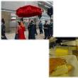 トルコハイライト-43- イスタンブル空港~仁川空港~セントレア
