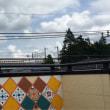 2017.8.17 rooftop garden part 2