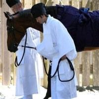 皇室から伊勢神宮へ「馬」の贈り物