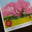 桜開花まであとひと月半