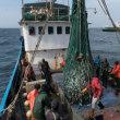 不透明な漁業取引、汚職がアフリカ漁業を妨げる