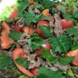 週明けの糖質オフメニュー 「トマトたっぷり焼き肉サラダ」