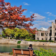 過去の写真~桜紅葉(広島市)