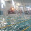 2017年競泳大会