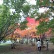 真駒内公園散策