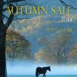 【オータムセール2018(Autumn Sale、1歳馬)】の「上場馬名簿」(2冊目、263頭分)が発行!