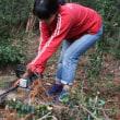 「育てる林業」について *昨日の記事の続き。[友愛の森/里山再生プロジェクト<72>]