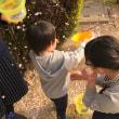 広島・己斐の実家の桜が満開