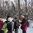 2018年12月11日(火) さっぽろ自然散歩「野幌森林公園」
