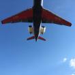 伊丹空港に着陸する飛行機を真下から見上げる超人気スポットに出かけました。大迫力に圧倒されました。