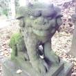 雄琴神社の狛犬