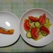 夕飯は鮭焼き魚でした