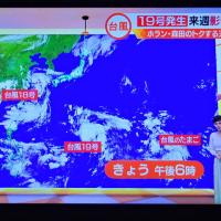 8/17 台風20号 森田さんの時は卵だったのに