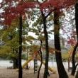練馬区立武蔵関公園12.05
