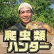 """【生態系""""破壊""""をいうトンデモ講師】加藤英明を認めない!"""