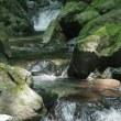 塩原・竜化の滝(栃木・那須塩原市)