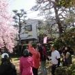 蜂須賀桜イベント