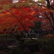 荻窪・大田黒公園の紅葉