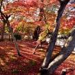 京都散策9・・・【いな】