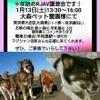 新年1月2月、犬と猫の譲渡会お知らせ