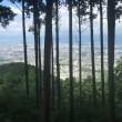 明星山→白金山に登って来た。