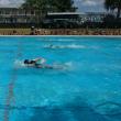水泳発表会