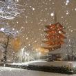 都内の雪景色