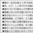 大正動物医療センターニュースレター【2017年3月号】