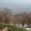 藻岩山からの展望