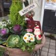 アロマタイムカフェ、玄関植木鉢クリスマスバージョン