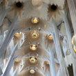 サグラダファミリア聖堂の内部その10  投稿者:佐渡の翼