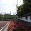 新川をぶらり散歩