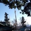 高尾山で初詣